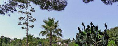 Jardín Botánico Pinya de Rosa