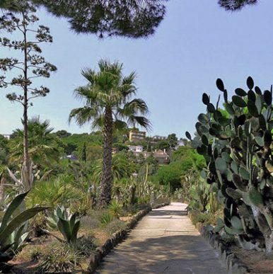 Jardin botanique Pinya de Rosa