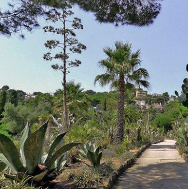 Botanic garden Pinya de Rosa